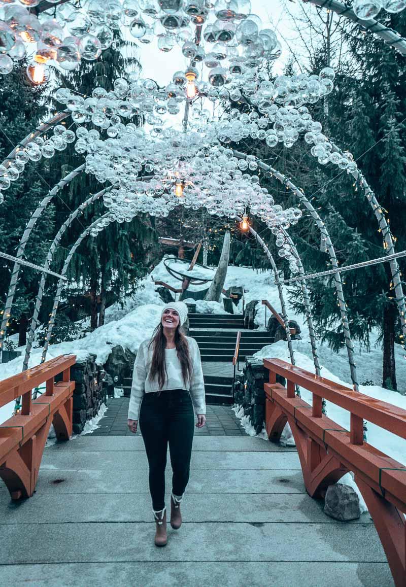 arch four seasons whistler