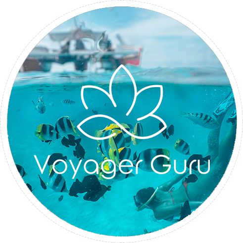 voyager guru travel partners