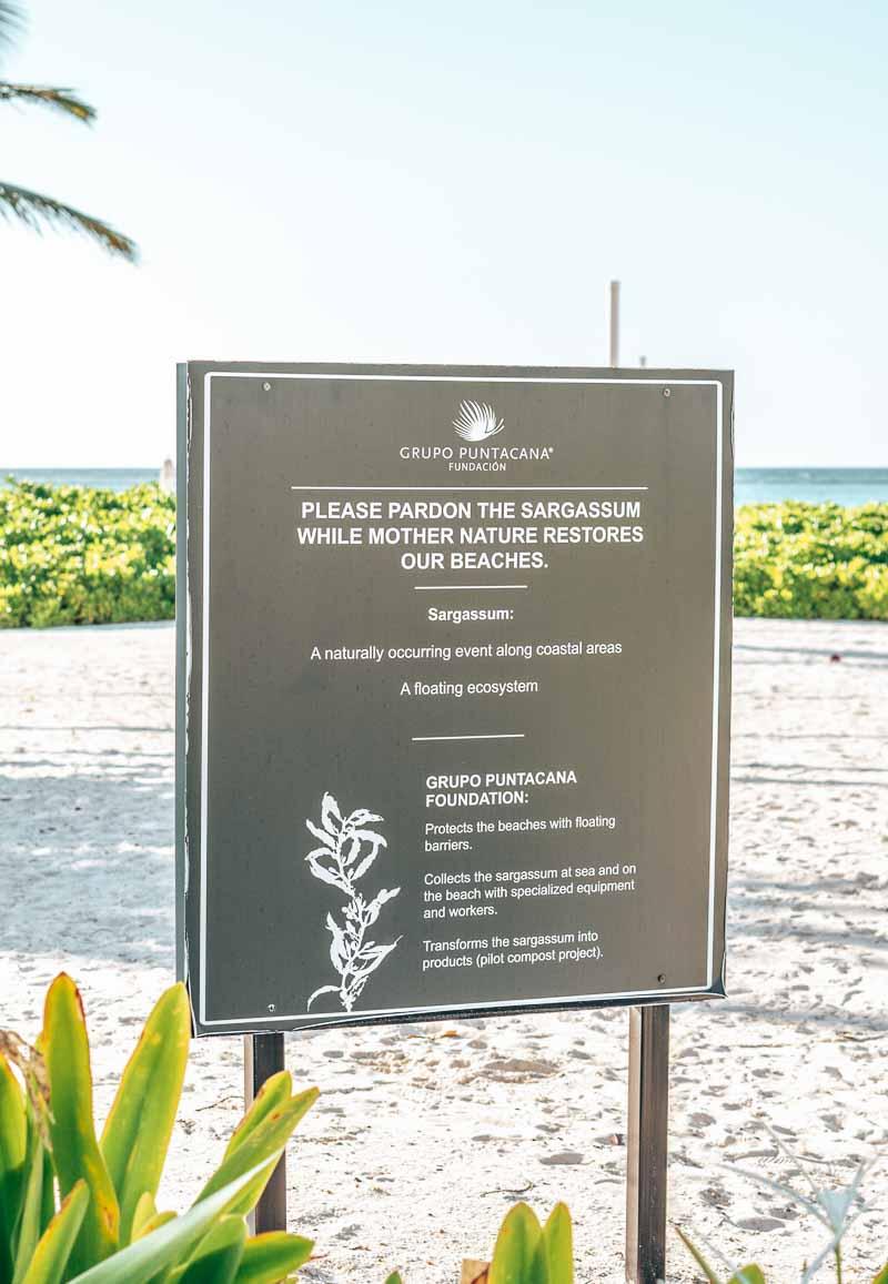 Westin Punta Cana beachfront sargassum